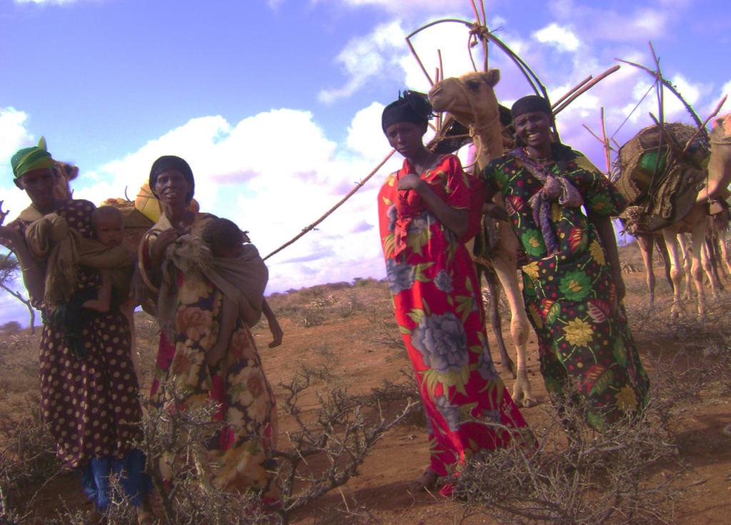 Ogaden Report 2015